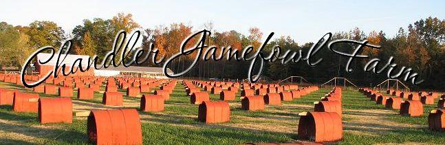 Chandler Gamefowl Farm